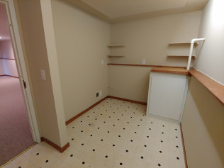 2nd Bonus Room - Lower Level